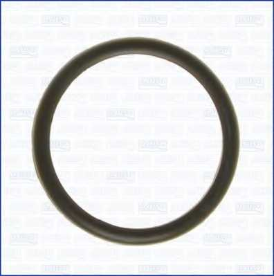 Прокладка термостата AJUSA 00538100 - изображение