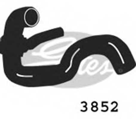 Шланг радиатора GATES 3852 - изображение