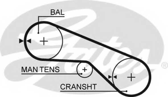 Ремень ГРМ GATES 5025 - изображение