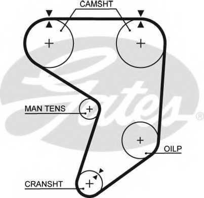 Ремень ГРМ GATES 5195XS - изображение