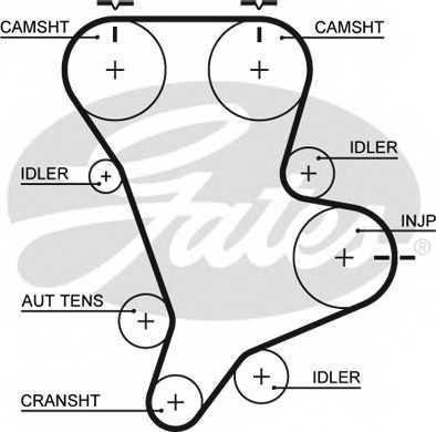 Ремень ГРМ GATES 5583XS - изображение