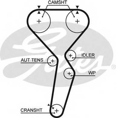 Ремень ГРМ GATES 5585XS - изображение