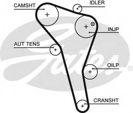 Ремень ГРМ GATES 5622XS - изображение