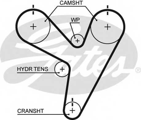 Ремень ГРМ GATES T255 - изображение