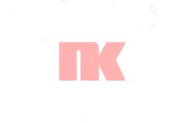 Тормозной шланг NK 852679 - изображение 1