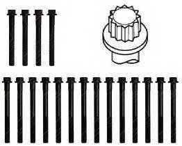 Комплект болтов головки цилидра PAYEN HBS315 - изображение 1