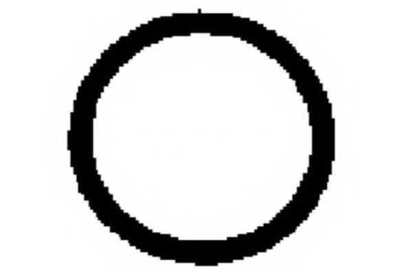 Прокладка впускного коллектора PAYEN JD5891 - изображение