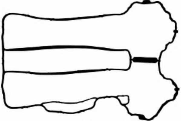Прокладка крышки головки цилиндра PAYEN JM5121 - изображение