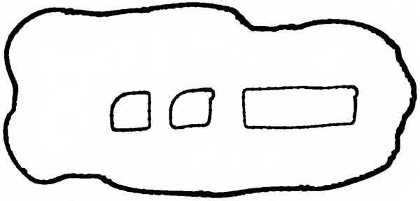 Комплект прокладок крышки головки цилиндра REINZ 15-36563-01 - изображение