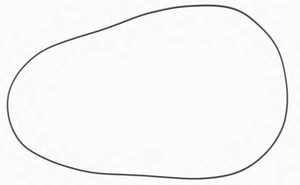 Прокладка крышки головки цилиндра REINZ 40-76723-00 - изображение