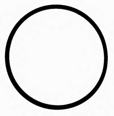 Прокладка впускного коллектора REINZ 40-77586-00 - изображение