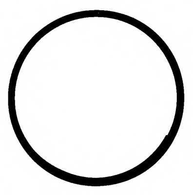 Вращающееся кольцо коленвала REINZ 71-31304-00 - изображение