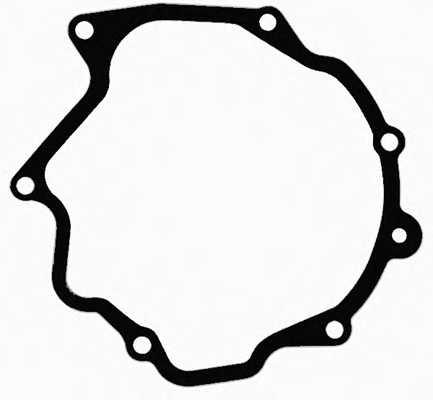 Прокладка, вакуумный насос REINZ 71-31793-00 - изображение