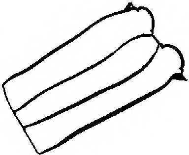 Прокладка крышки головки цилиндра REINZ 71-33846-00 - изображение