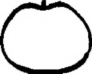 Прокладка впускного коллектора REINZ 71-34083-00 - изображение