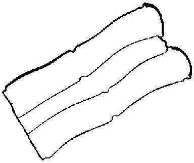 Прокладка крышки головки цилиндра REINZ 71-34333-00 - изображение