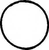 Прокладка впускного коллектора REINZ 71-34473-00 - изображение
