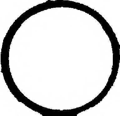 Прокладка впускного коллектора REINZ 71-36066-00 - изображение