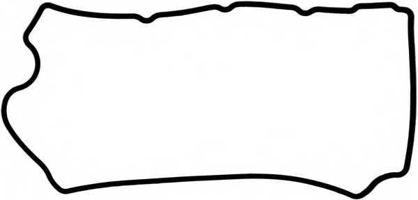 Прокладка крышки головки цилиндра REINZ 71-36967-00 - изображение