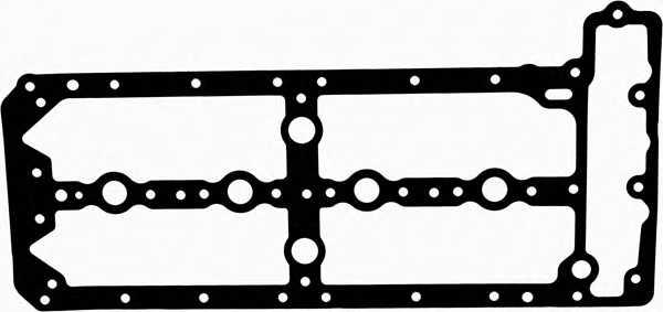 Прокладка крышки головки цилиндра REINZ 71-38371-00 - изображение