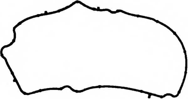 Прокладка крышки головки цилиндра REINZ 71-38554-00 - изображение