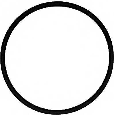 Прокладка впускного коллектора REINZ 71-39303-00 - изображение