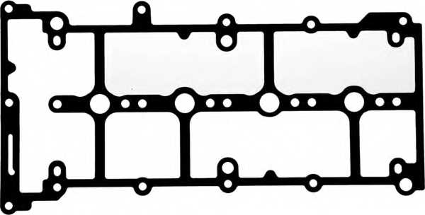 Прокладка крышки головки цилиндра REINZ 71-42061-00 - изображение
