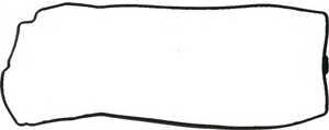 Прокладка крышки головки цилиндра REINZ 71-53587-00 - изображение