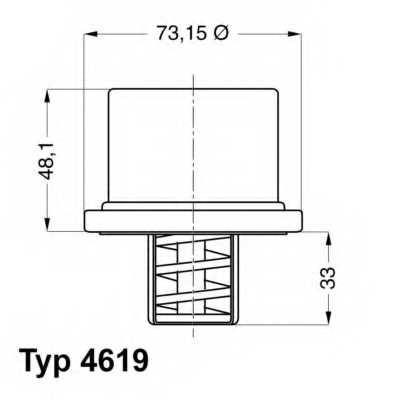 Термостат охлаждающей жидкости WAHLER 4619.80 - изображение